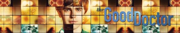 The Good Doctor S04E10 Decrypt 1080p AMZN WEBRip DDP5 1 x264-TOMMY