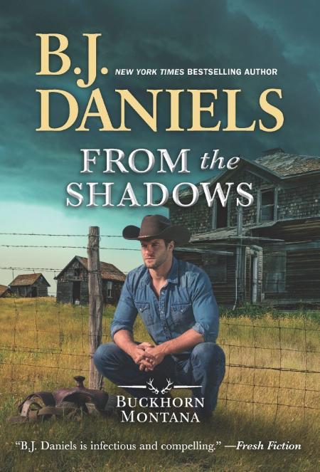 From the Shadows - B J  Daniels