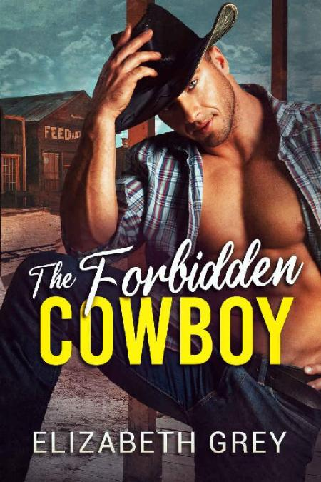 The Forbidden Cowboy - Elizabeth Grey