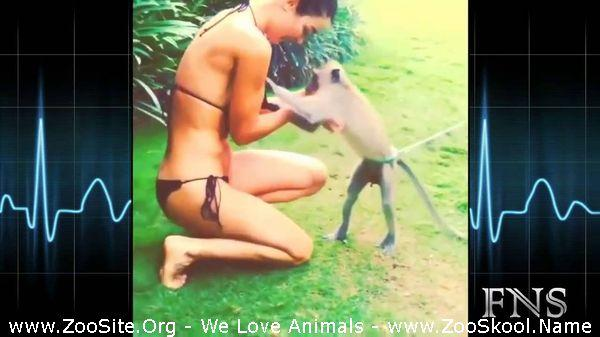 191909695 0111 fun naughty animal want to undress girl - Naughty Animal Want To Undress Girl